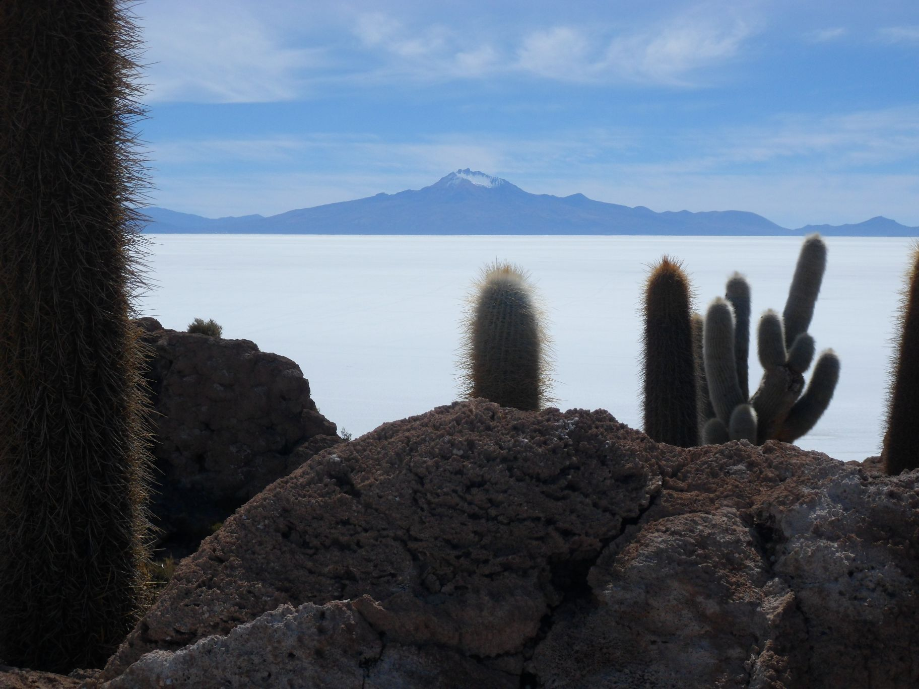 View over the Salar from Inca Huasi